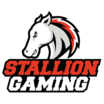 Stallion gaming%28hun%29