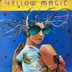 Yellow magic orchestra ymo