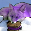 Fox small