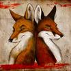 Fox and fox by culpeo fox