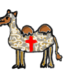 Camelcrusaders