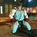 Ryu meditate