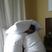 Pillow fort yoyo