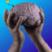 Mindofme  profile image 0306dbad9be0a78d 300x300 (custom)