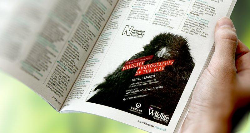 natural-history-museum-branding-advertisement-listing-landscape