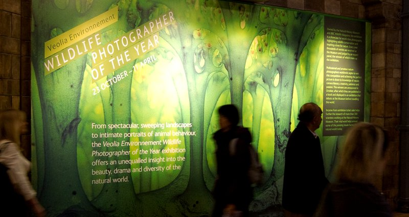 Natural History Museum Branding Exhibition