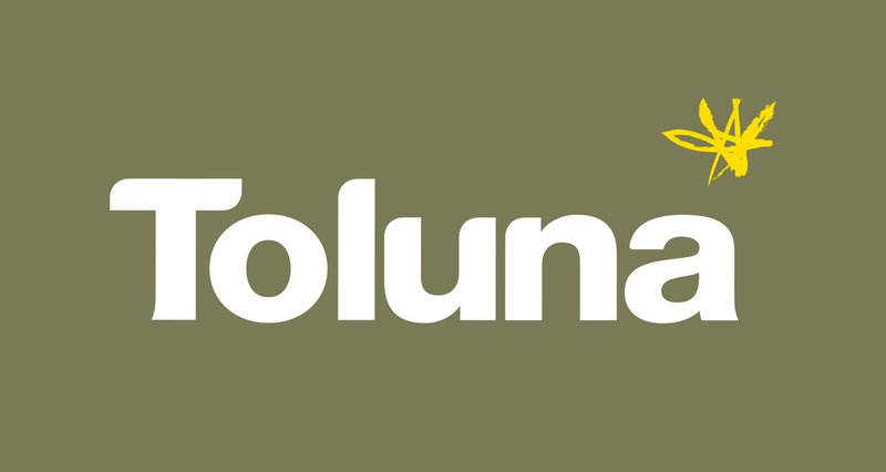 toluna-branding-logo-listing-landscape