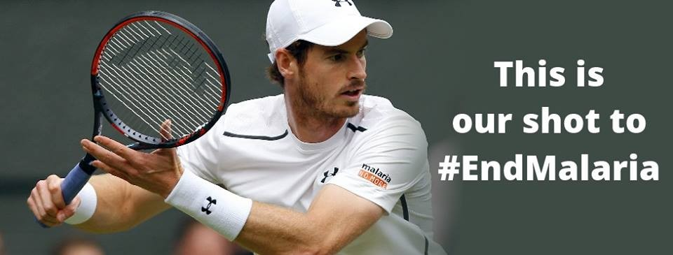 14f23d52b5e115 Under Armour Tennis Shoes Signed by the Wimbledon Champion Andy Murray -  CharityStars