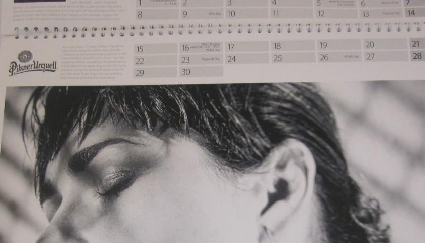 Alena Seredova Calendario.Calendario Expo Cz 2015 Firmato Da Alena Seredova Charitystars