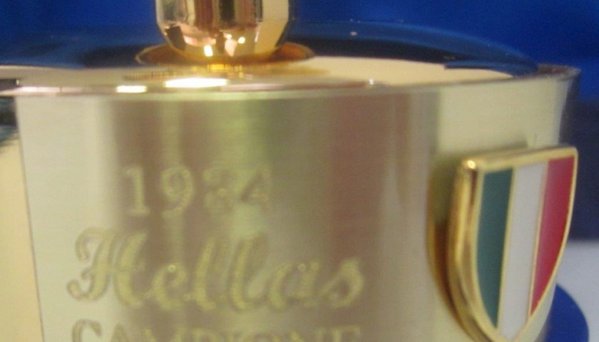 Replica scudetto Hellas Verona 1984-1985 - CharityStars