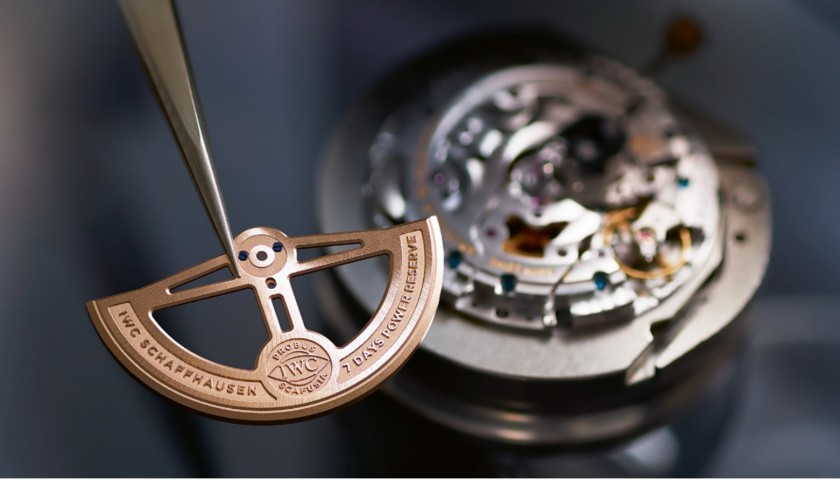 IWC Engineering Excellence - Watchmaking Course