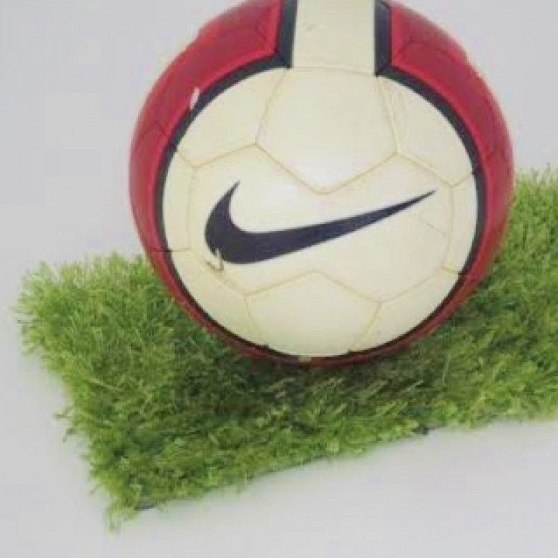 Nike official ball, used in Serie A 2007/2008