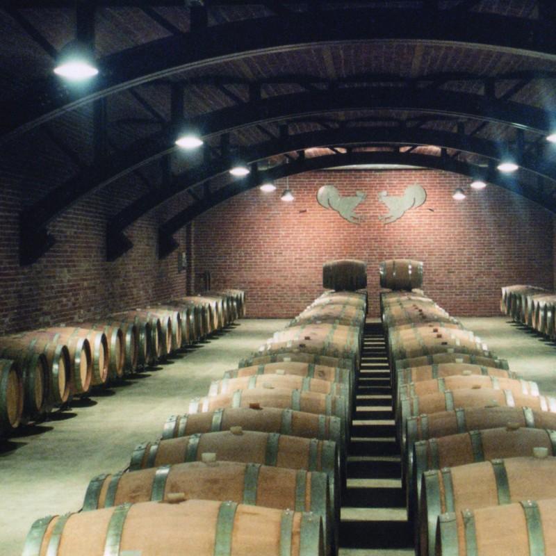 Tour of the beautiful Tenuta Mazzolino winery for 10 people