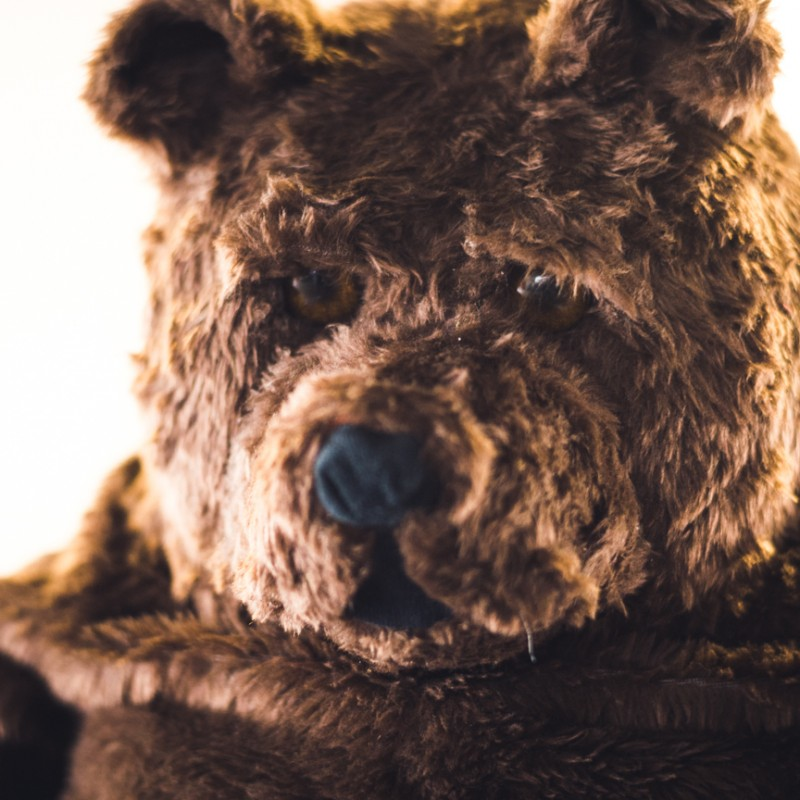 Stuffed Bear from Mercedes-AMG Commercial Starring Lewis Hamilton