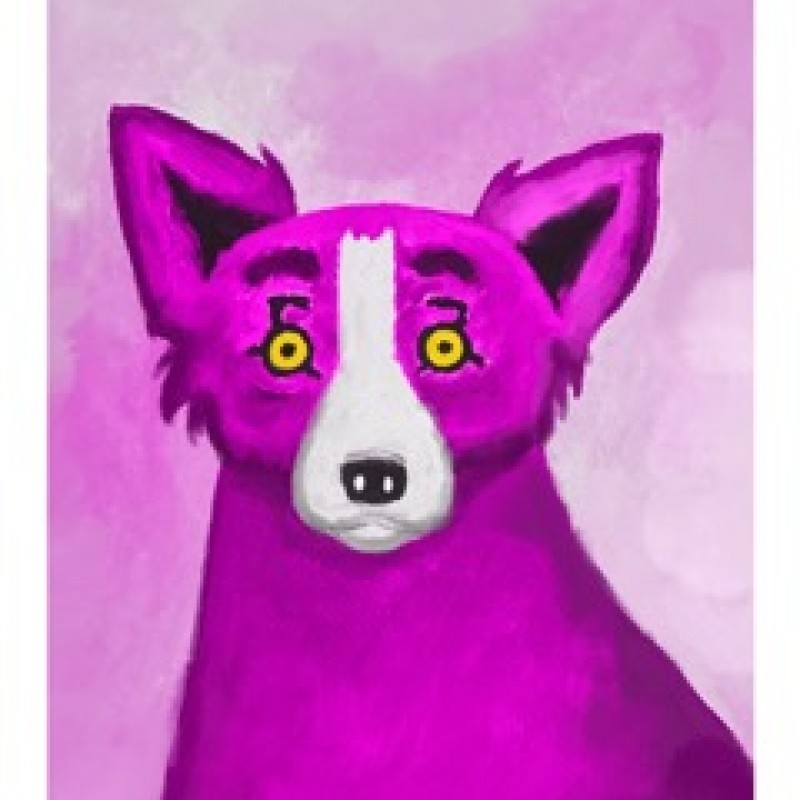 """""""Pink Dog"""" by Thomas Hussung"""