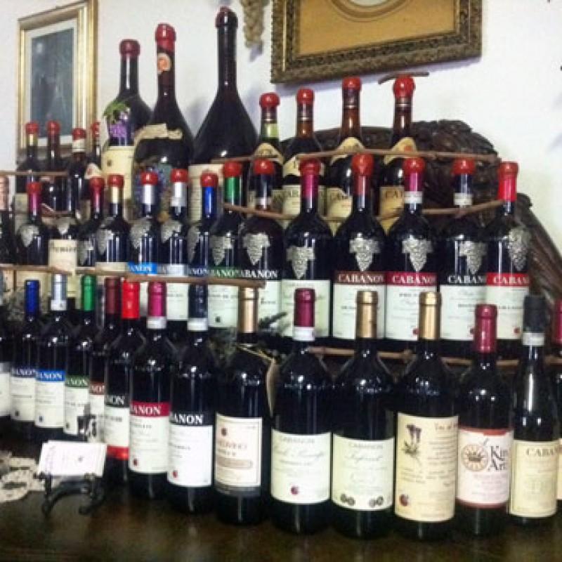 5 Bottiglie di vino Cabanon