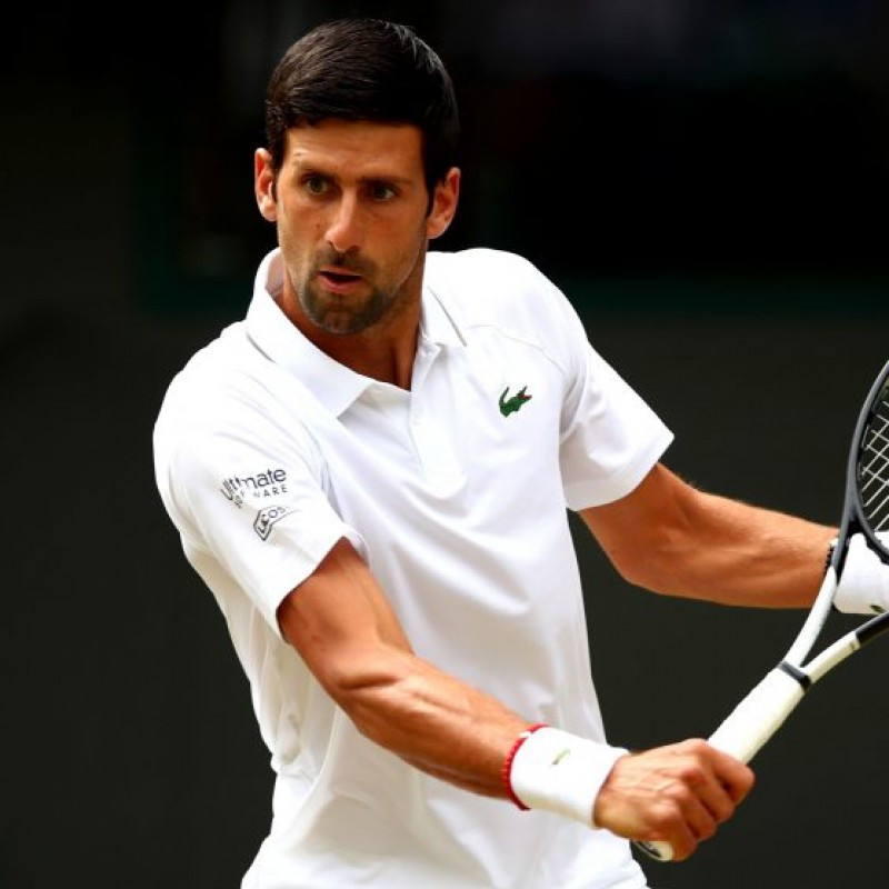 Head Pro Tennis Ball Signed by Novak Djokovic