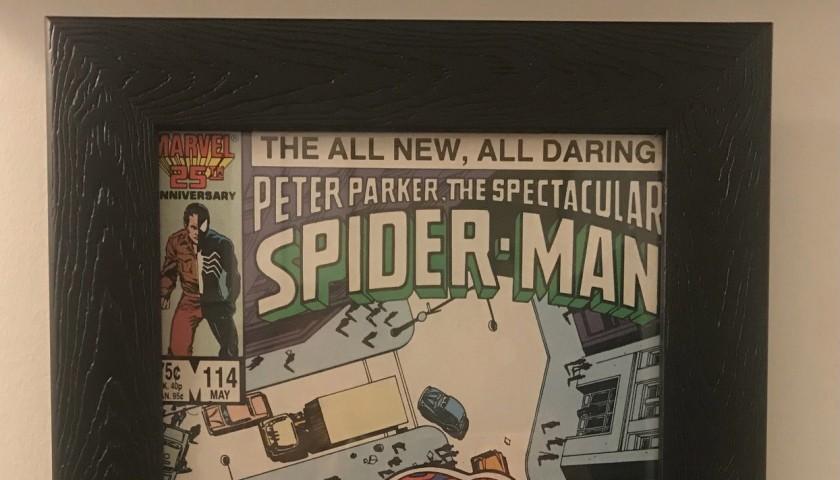 Stan Lee Signed and Framed Spider-Man Comic