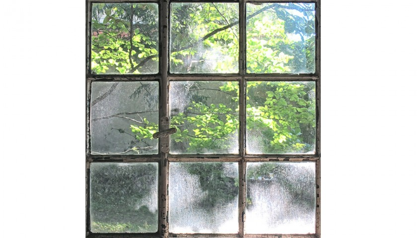 "Fotografia ""Leaves Behind The Window"" di Vera Rossi"