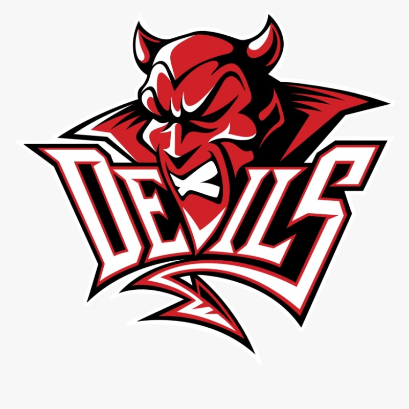 Cardiff Devils match Experience