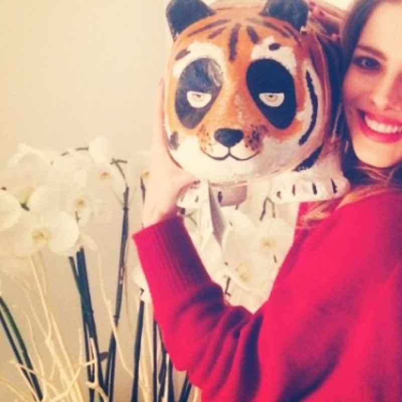 "Panda""Tiger"" personalized by Alexandra Dinu"
