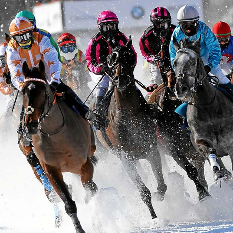 VIP White Turf Race Experience in St Moritz for 2