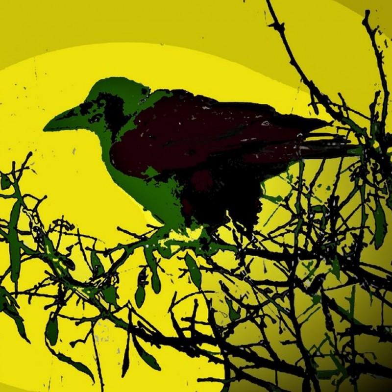 """The Crow"" Original Limited Edition Board by John Efrem"