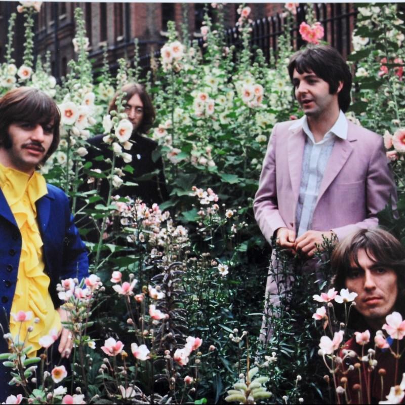 "The Beatles ""Flower Power II"" Framed Photograph by Tom Murray"