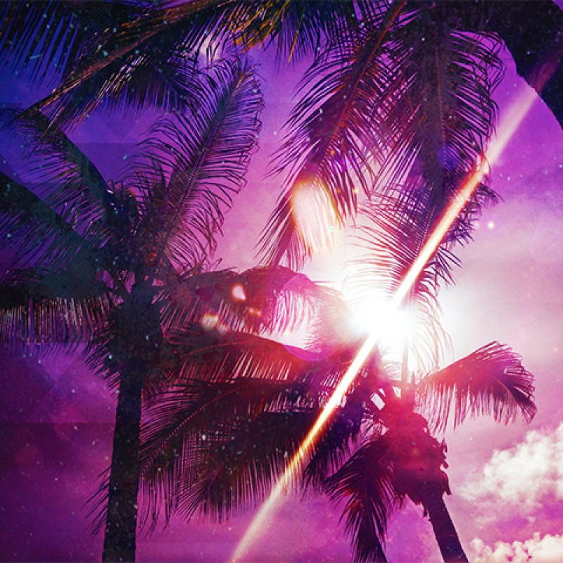 """""""Palms"""" by Ylenia Pizzetti"""