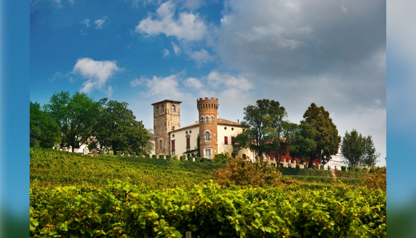 One-Night Stay and Wine Tasting at Castello di Buttrio, Italy