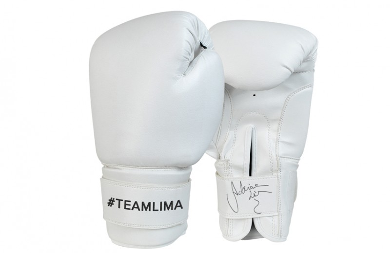 Signed, Worn Boxing Gloves