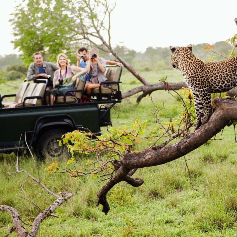 5-Night Stay in a Luxury Safari Camp for 2