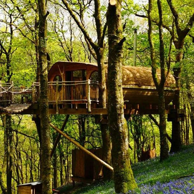 3-Night Tree House Escape for 2