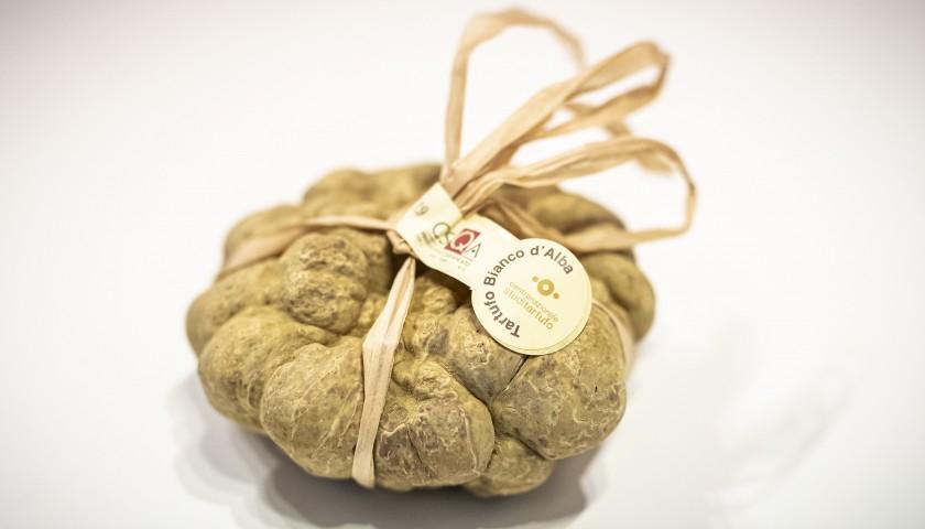 Tasting of Alba White Truffle with Expert