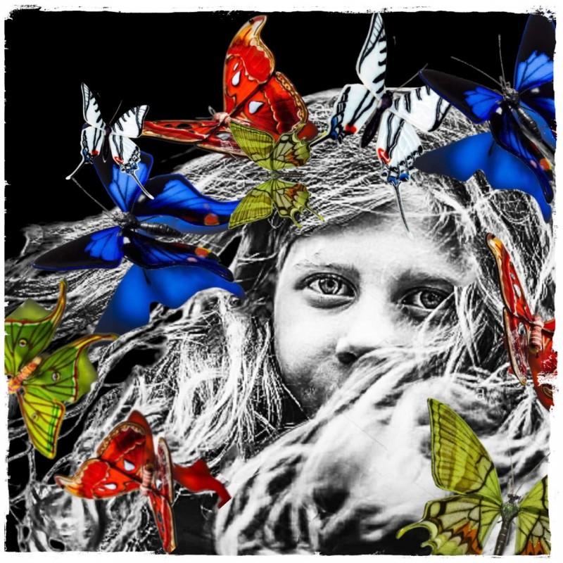 """""""Multicolor butterflies"""" by Mr Ogart"""
