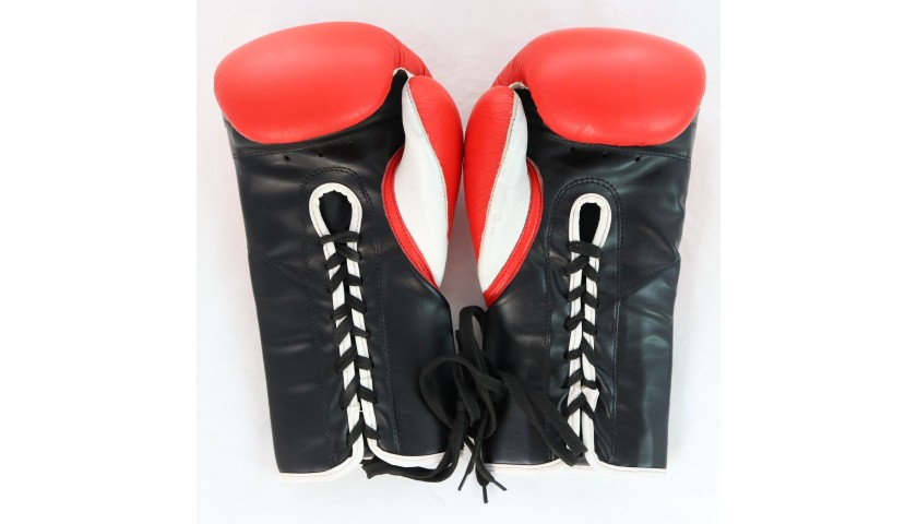 Giorgio Petrosyan Signed Boxing Gloves