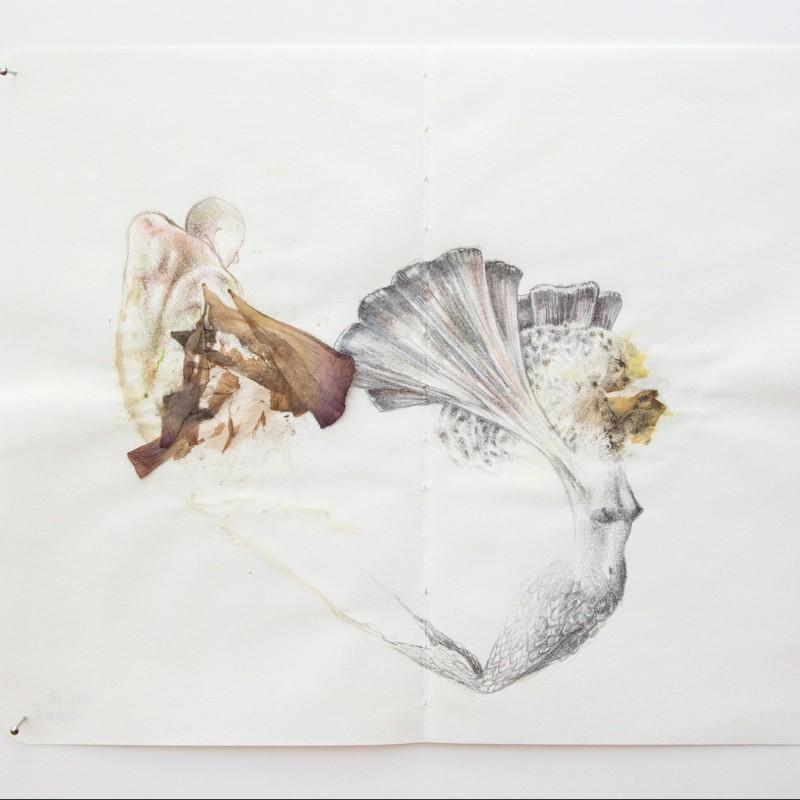 """Bilancia"", ""Racconti vegetali"" Series by Cecilia Viganò"