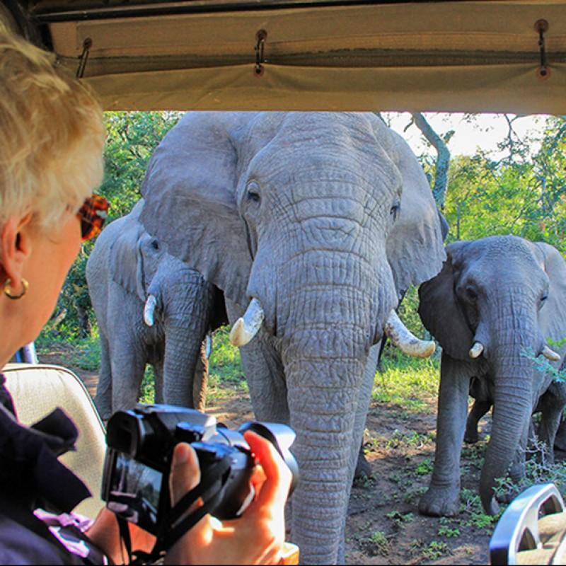 Unique Six-Night Luxury African Safari for 2