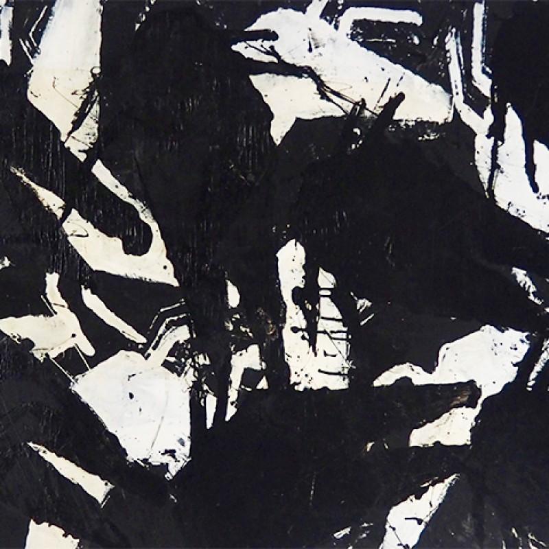 """Insetti"" by Sergio Ragalzi"