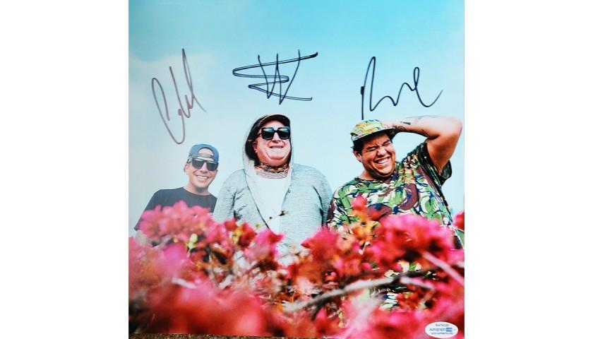 Sublime Signed Album