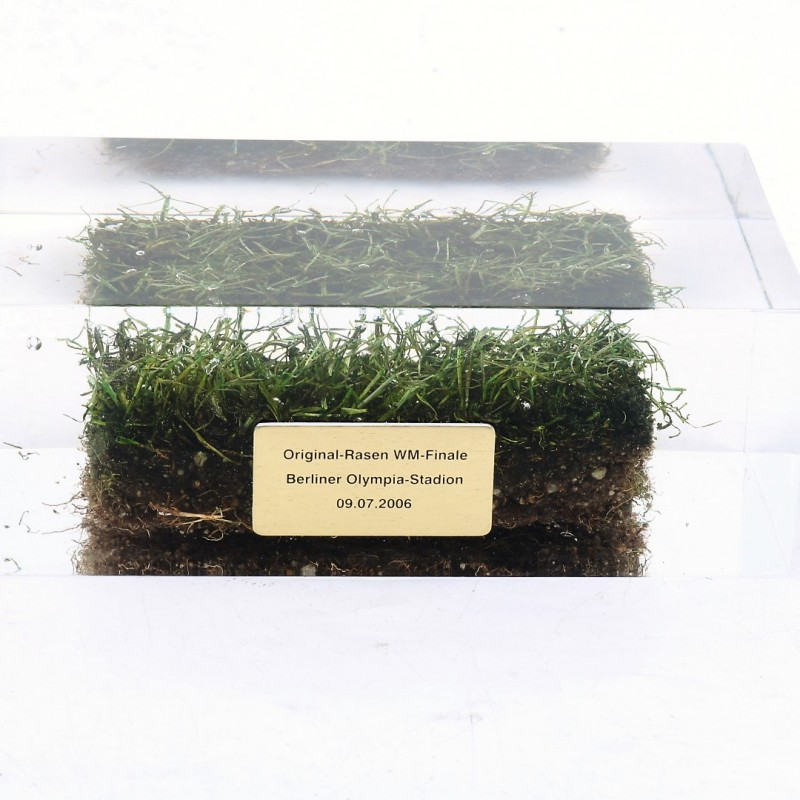 Original Olympiastadion Sod from the 2006 World Cup Finals