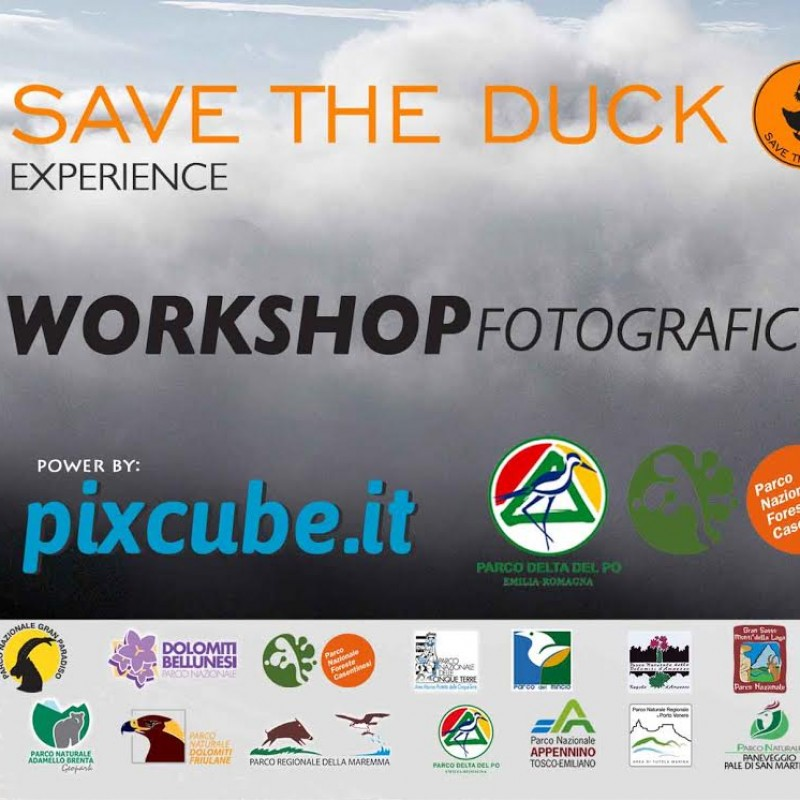 Save the Duck experience