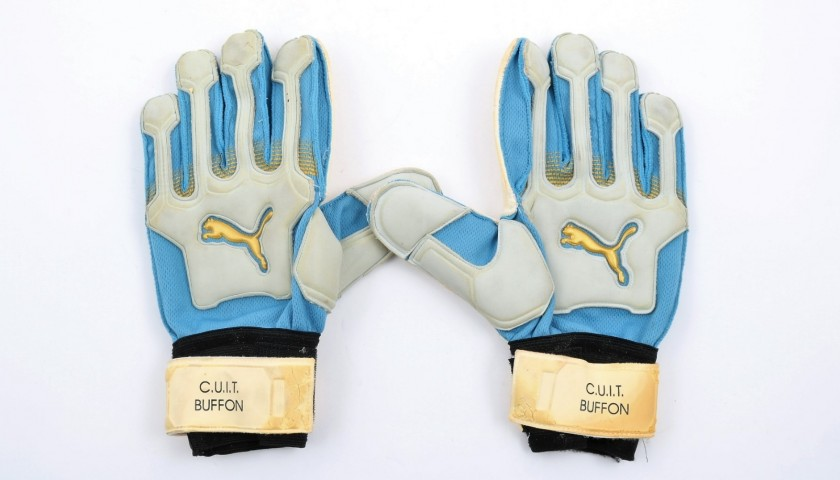 352c13653 Customized gloves worn by Gigi Buffon - CharityStars