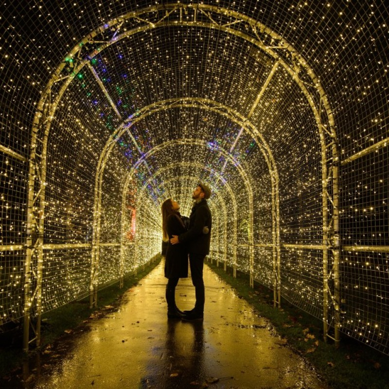 2 Tickets to Attend the Sold Out Christmas at Kew