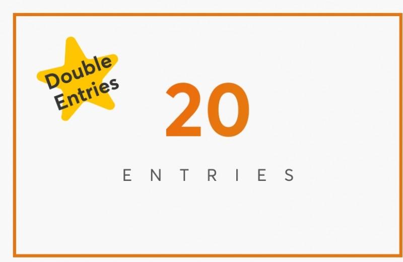 20 Entries