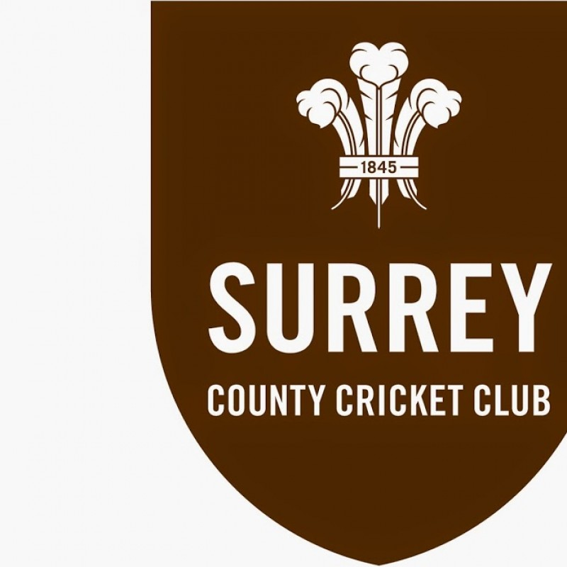 Four Tickets to Any Surrey T20 Game at The Oval for Summer 2017