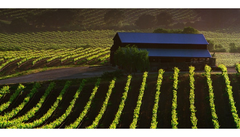 Sipping Napa Valley at Home
