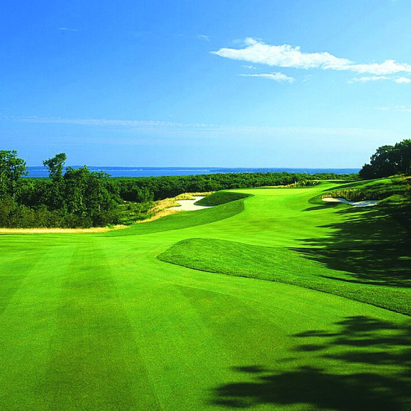 Round of Golf for 3 with a Member at The Bridge Golf Club