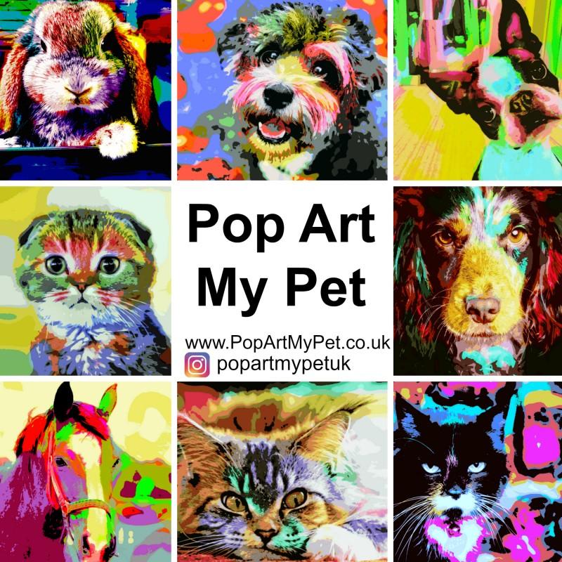 Pet Art With POP ART MY PET.co.uk