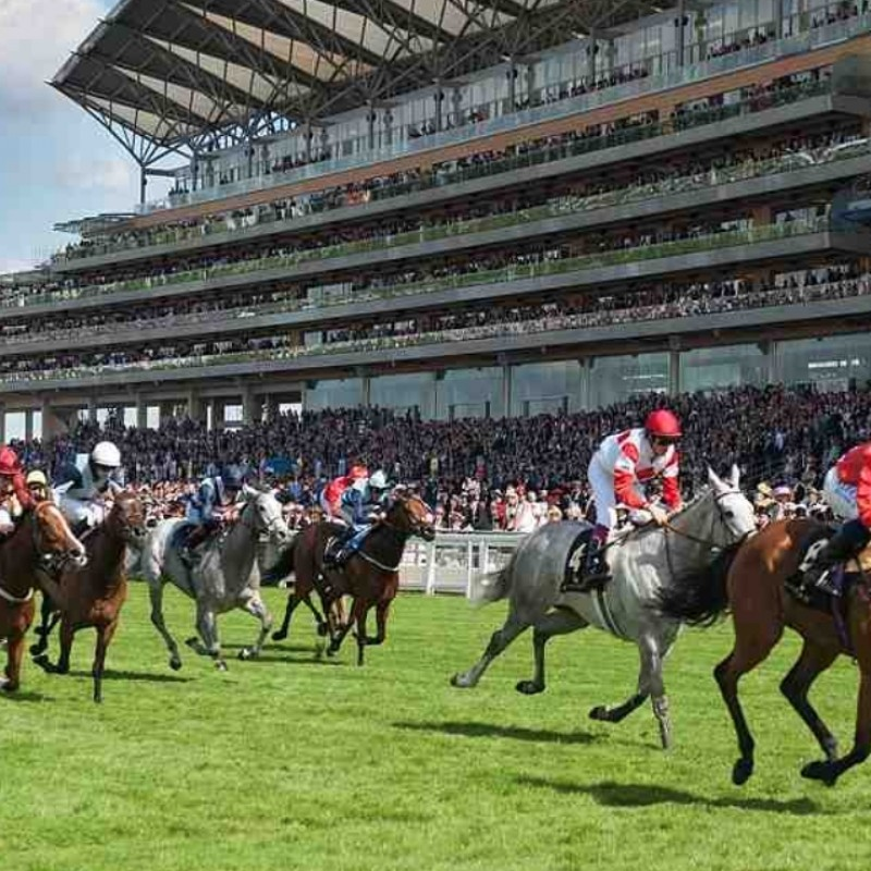 Two Royal Ascot Royal Enclosure Invites from The Queen